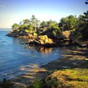 Carmel Meadows Beach At Point Lobos Art Print