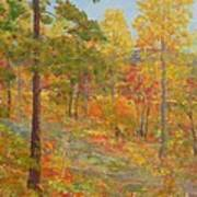 Carolina Autumn Gold Art Print