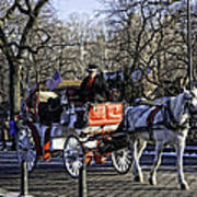 Carriage Driver - Central Park - Nyc Art Print