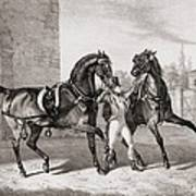Carriage Horses For The King Art Print