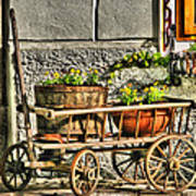 Cart And Flowers In Slovenia Art Print