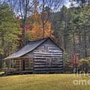 Carter-shields Cabin Art Print by Crystal Nederman