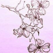 Cascade Dogwood Art Print