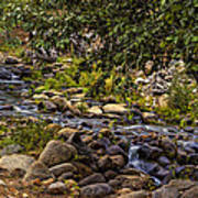 Cascading Creek Art Print