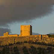 Castillo De La Mota Art Print