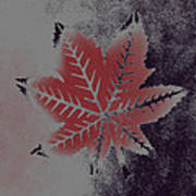 Castor Leaf Art Print