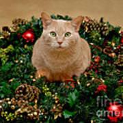 Cat And Christmas Wreath Art Print