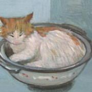 Cat In Casserole  Art Print
