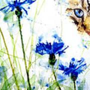 Cat In The Cornflowers Art Print by Paul Lovering