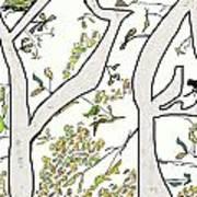 Cat In Tree White Background Art Print