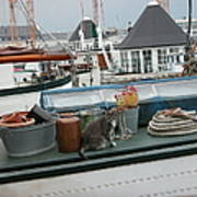 Cat On Boat Art Print