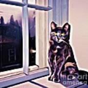 Cat On Window Sill Art Print