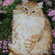 Kitten Cat Painting Perfect For Child's Room Art Art Print