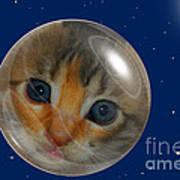 Cat Planet Art Print