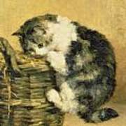 Cat With A Basket Art Print