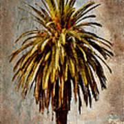 Catalina 1932 Postcard Art Print