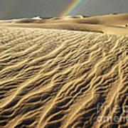 Catch A Rainbow Art Print