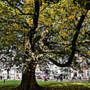 Cathedral Square - Exeter Art Print