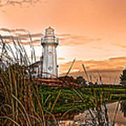 Cattails And Lighthouse In Indiana Art Print