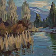 Cattails At Harry's Pond 1 Art Print