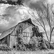 Cattaraugus County Barn 6160b Art Print