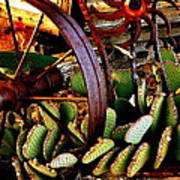 Caught In A Cactus Patch-sold Art Print