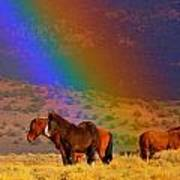 Caught In A Rainbow  Art Print by Jeanne  Bencich-Nations