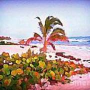 Cayman Island Secret Art Print