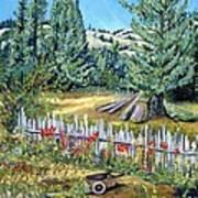 Cazadero Farm And Flowers Art Print