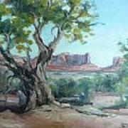 Cedar At Monument Valley Art Print
