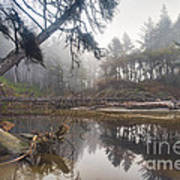 Cedar Creek Lagoon Art Print