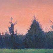 Cedars Along St. Marys In Hillsborough Art Print