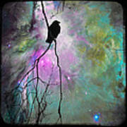 Celestial Dream Of Crow Art Print