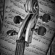Cello Classic Art Art Print