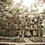 Cemetery Sunflares Art Print