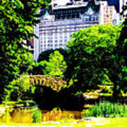 Central Park At 59th Street Art Print