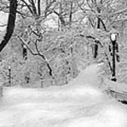 Central Park Dressed Up In White Art Print