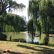 Central Park In The Summer Art Print