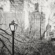 Central Park Lamppost In New York City Art Print