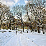 Central Park Snow Storm One Day Later2 Art Print
