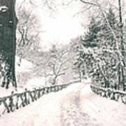 Central Park Winter Landscape Art Print