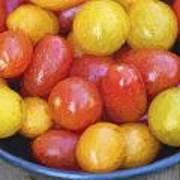 Cezanne Style Digital Painting Fresh Juicy Heirloom Tomatoes In Rustic Setting Art Print