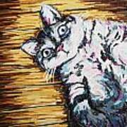 Chachi Cat Portrait Art Print