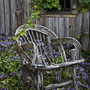 Chair In The Garden Art Print