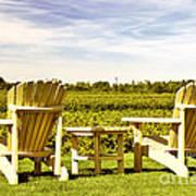 Chairs Overlooking Vineyard Art Print by Elena Elisseeva