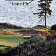 Chambers Bay's Lone Fir - Chambers Bay Golf Course Art Print