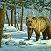 Chance Encounter - Grizzly Art Print