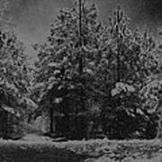 Charcoal Snowfall Art Print