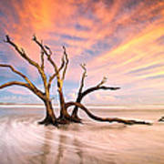 Charleston Sc Sunset Folly Beach Trees - The Calm Art Print by Dave Allen
