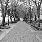 Charleston Waterfront Park Walkway - Black And White Art Print